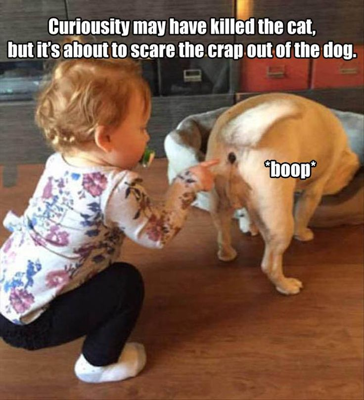 funny pictures baby