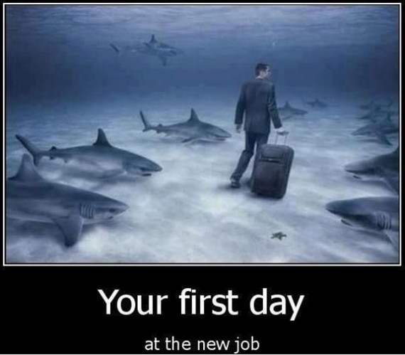 Top Best Funny Pictures Of The Day - image Funny-Pictures-first-day-at-work on http://www.topbestpics.com