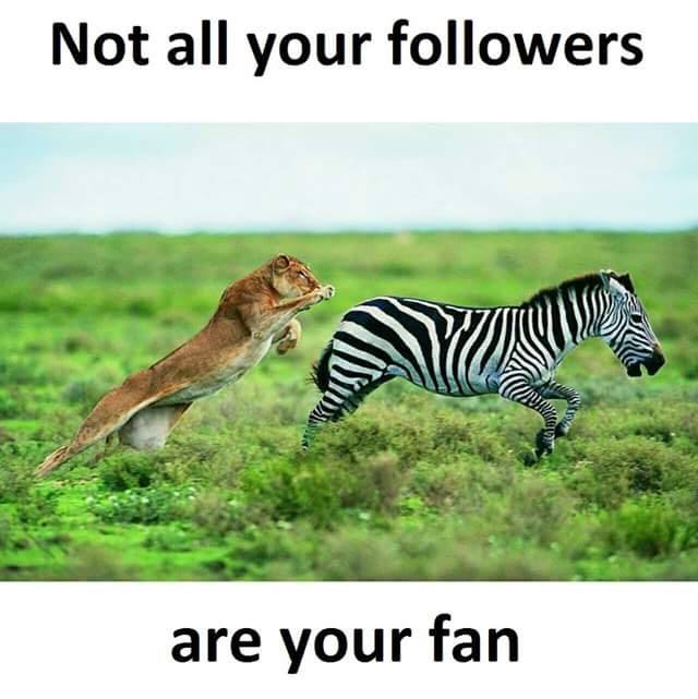 not all your fallowers are your fan