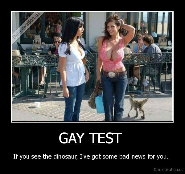 fun gay test funny pictures