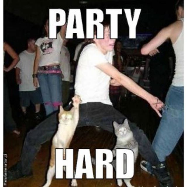 funny party hard