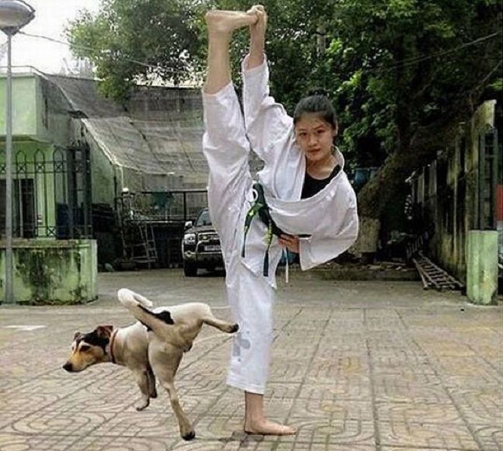 funny pictures funny fails