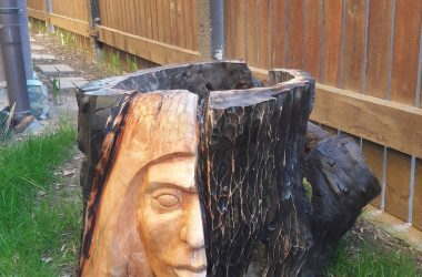 Romanian Artist Turn Tree Stumps Into Amazing Sculptures