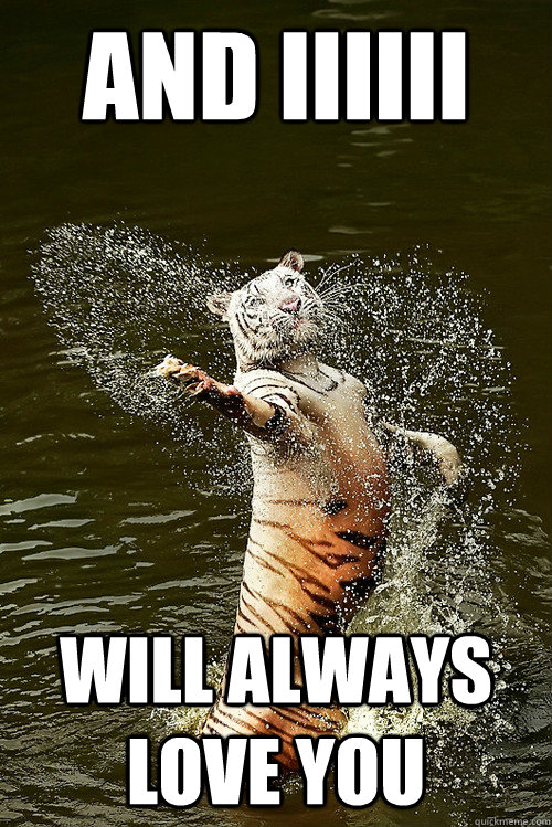 tiger funny pictures