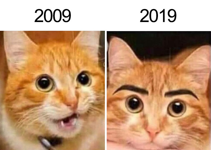 Funny 10 Year Challenge Pictures - image funny-10-year-challenge-pictures-8 on https://www.topbestpics.com