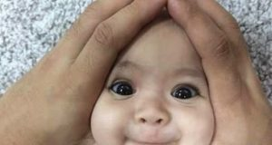 Funny Pictures Funny Baby Pics